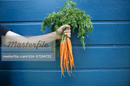 Man holding bunch of organic carrots