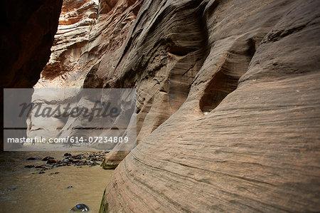 Virgin narrows, Zion National Park, Utah, USA
