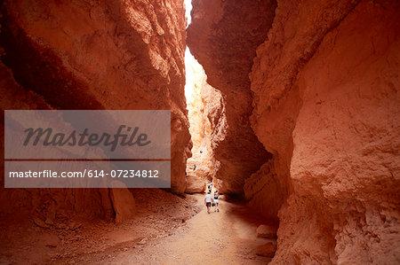 Navajo Loop at Wall Street section of the trail, Bryce Canyon National Park, Utah, USA