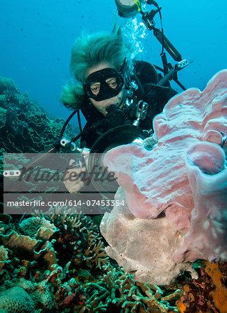 Underwater photographer.