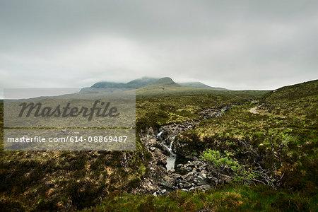 Mossy rocks in rural landscape
