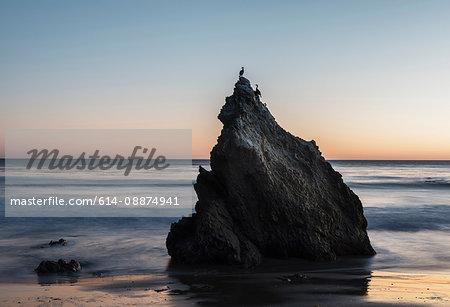 Rock and seabirds at El Matador beach, Malibu, California, USA