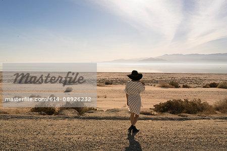 Rear view of woman wearing sunhat looking away at desert, Salton Sea, California, USA