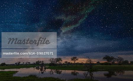 Starry night sky over swamp, Okavango Delta, Botswana, Limpopo, South Africa, Africa
