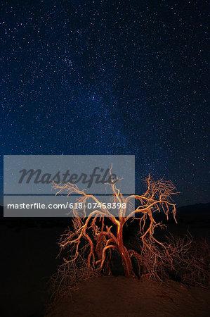 Death Valley National Park, California. USA
