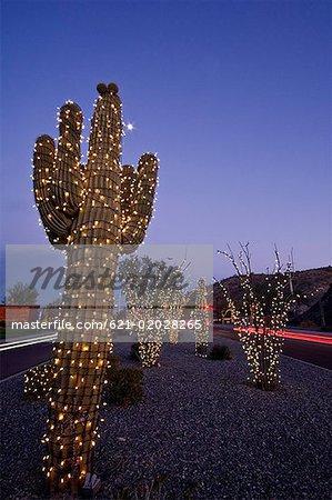 christmas lights on saguaro cactus phoenix arizona stock photo