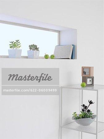 Small Plant Pots On Room Window Sill