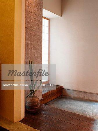 Large Vase With Plant In Corner Of Room, Wood Floor