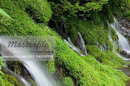 Beautiful View Of Waterfall