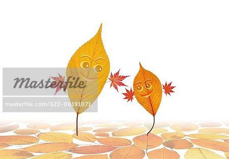 Floating Smiley Leaves, Fallen Leaves