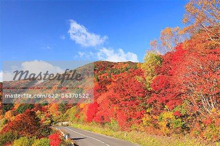Red foliage in Fukushima Prefecture