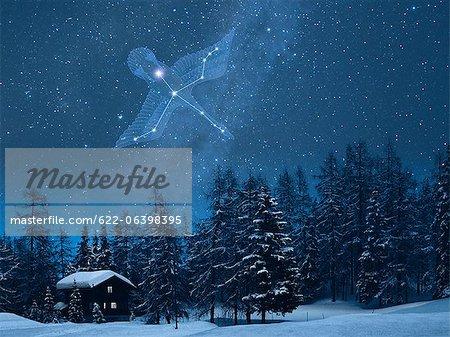 Cygnus constellation in the snowy Switzerland