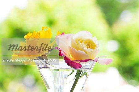 Henry Fonda roses in a glass