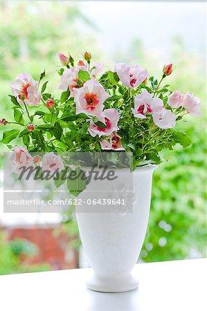 Eridu Babylon roses in a white vase