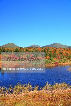 Autumn in Hakkoda, Aomori Prefecture