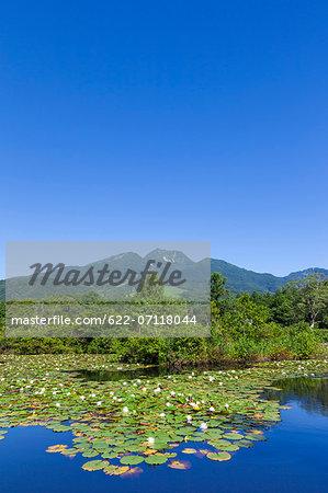 Mount Myoko and Imori pond, Niigata Prefecture