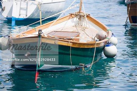 Boat moored at a harbor, Italian Riviera, Santa Margherita Ligure, Genoa, Liguria, Italy