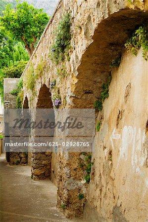 Low angle view of plants growing on a stone wall, Positano, Amalfi Coast, Salerno, Campania, Italy