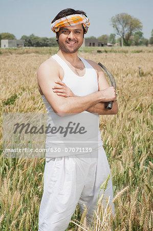 Farmer harvesting wheat crop, Sohna, Haryana, India
