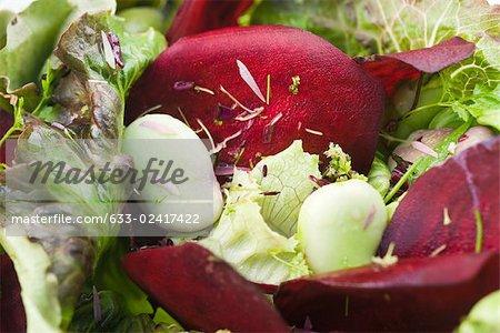 Salad of mixed greens and beets, close-up