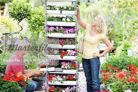 Couple buying flowers in nursery