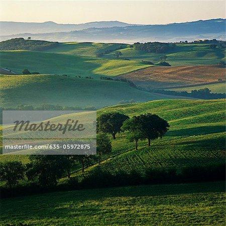 Rolling hills in rural landscape