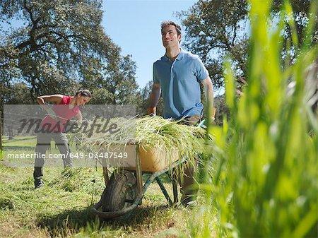 Man pushing wheelbarrow full of ha