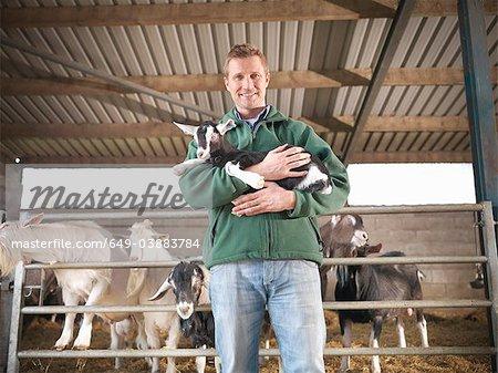 Worker holding kid goat on farm