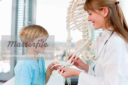 Doctor showing skeletal model to patient