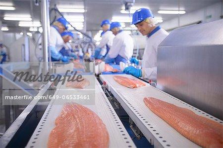 Fish filets on conveyor belt in factory