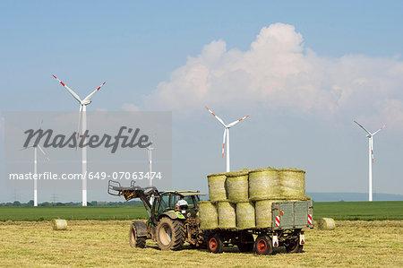 Wind turbines and harvesting, Selfkant, Germany