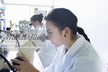 Biology students using microscopes