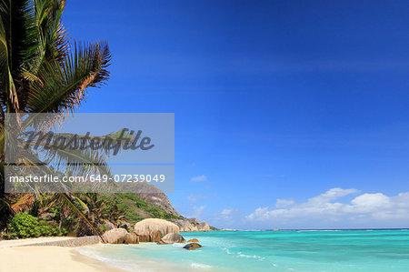 Beach and palm trees, La Digue, Seychelles