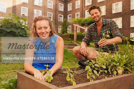 Couple planting vegetables on council estate allotment
