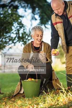 Senior couple admiring apples from bucket