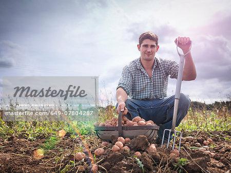 Portrait of farmer with basket of organic potatoes