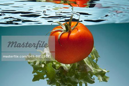 Tomato and lettuce underwater