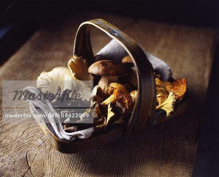 Organic wild mushrooms in basket on wooden cutting board