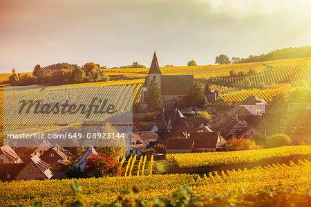 Rolling landscape with autumn vines and village, Hunawihr, Alsace, France