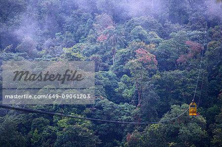 Cable car at the rainforest in Mindo, close to the equator, Mindo, Pichincha, Ecuador, South America