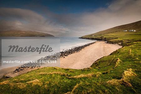 Grey Seal colony on Great Blasket beach, Blasket Islands, Ireland