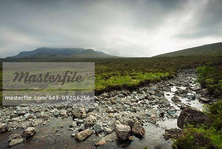 Rocks in rural creek