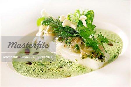 Barbel fillet with herb emulsion