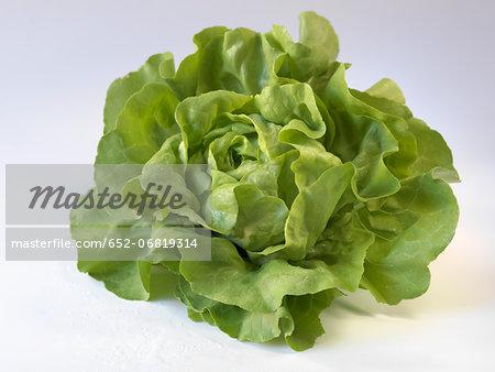 Whole lettuce