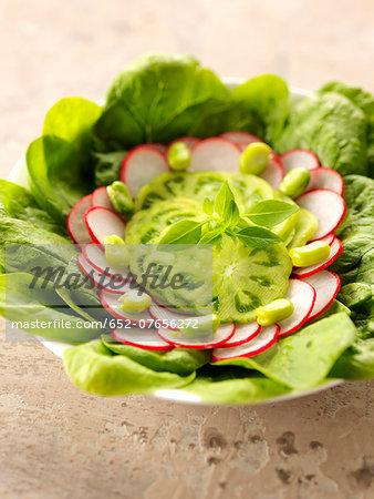 Green tomato,radish and spinach salad