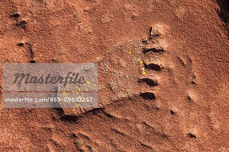 Full frame shot of footprint on rock surface