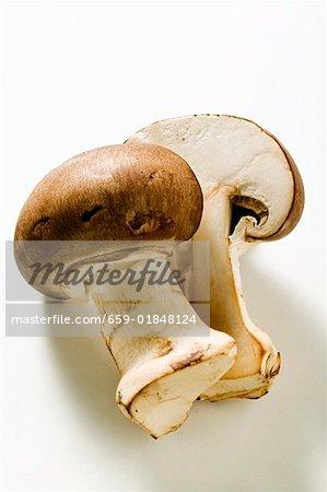 Shiitake mushroom, halved