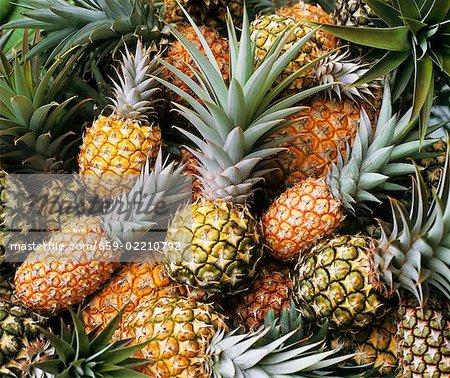 Ripe and unripe pineapples (full- frame)