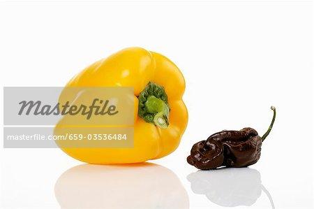 Yellow pepper and Scotch Bonnet chilli