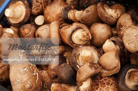 Crimini Mushrooms at a Farmer's Market